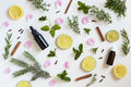Essential-Oils-Herbs-